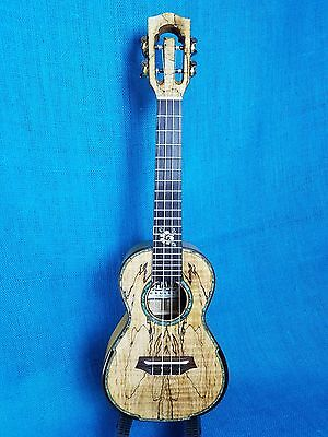 MIM: Ohana Concert CK-450SMP All Solid Figured Spalted Maple Setup Ukulele 294