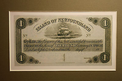 1850 Island Of Newfoundland 1 Pound Banknote - New Reproduction