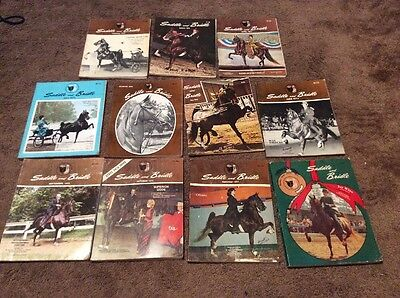 11 PC Lot Saddlebred Vintage SADDLE & BRIDLE RARE 1973 Horse Magazines