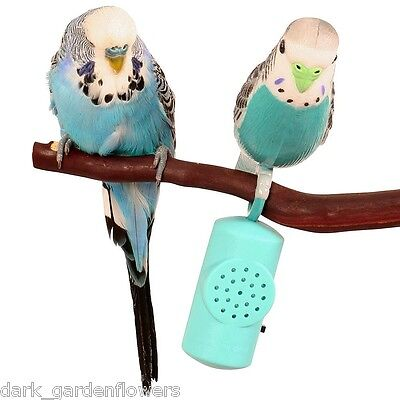 Budgie Buddy Parrot Toy With Sound For Budgies Inc Motion Sensor