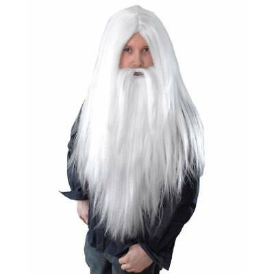 White Wizard Long Wig and Beard Father Christmas Adult Fancy Dress