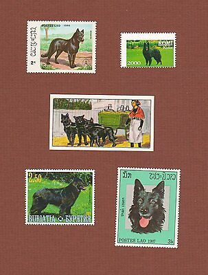 Belgian Sheepdog stamps and card set of 5