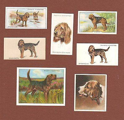 Otterhound dog cigarette trade cards set of 7