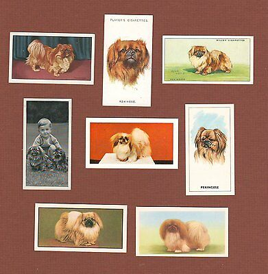 Pekingese dog cigarette trade cards set of 8