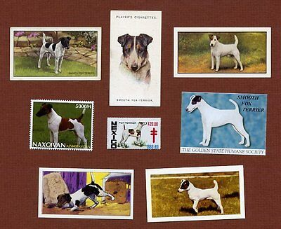 Smooth Fox Terrier dog stamps and cards set of 8