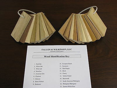 Wood Samples Identification Kit - Antique Restoration