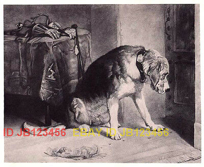 DOG Bloodhound Waiting Owner, Gorgeous Landseer Antique Collotype Print 1870s