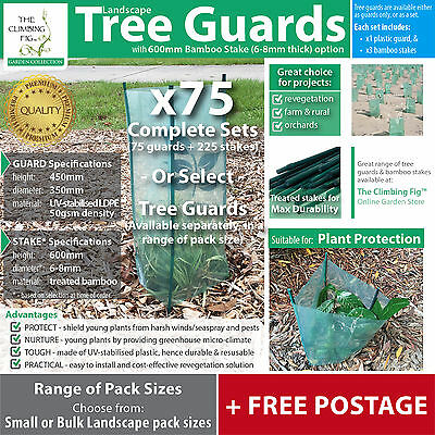 x75 TREE GUARD sets | farm plant, garden or revegetation | bamboo stake options.