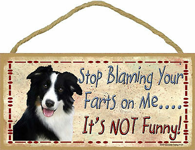 Border Collie Stop Blaming Your Farts on Me It's not Funny Wood Dog Sign USA