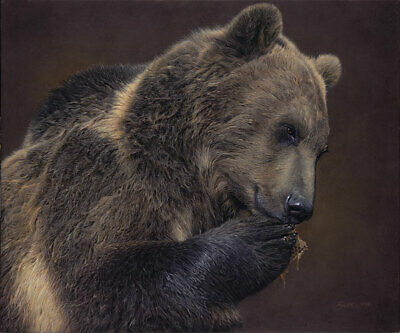 A Nose for Honey Daniel Smith LE100 18x21 Canvas Signed NEW Giclee Wildlife Bear
