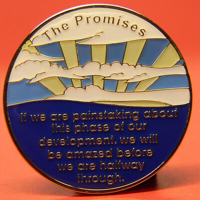 Aa Fancy Chip-Medallion - The Promises - Recovery - Sobriety - Enameled