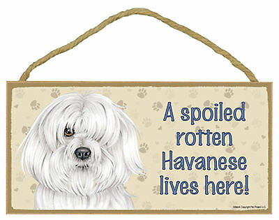 A spoiled rotten Havanese lives here! Wood Puppy Dog Sign Plaque Made in USA