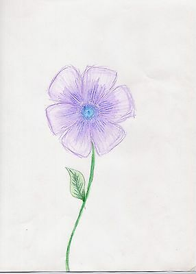 Artwork Flower Drawing by 12 Year Old Child Aspiring Artist Picture