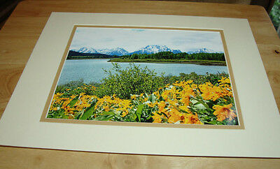 Mt. Moran & Oxbow Bend Matted Photo-Nature Photography-Landscape-Home Decor-