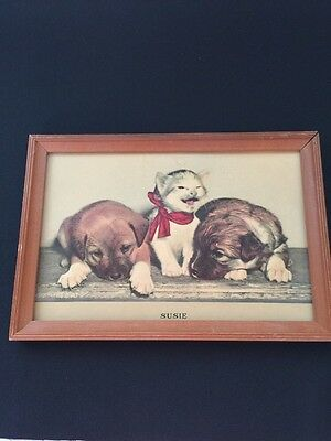 Vintage 1940 Susie Cat Puppies Litho Print #23301