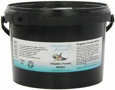 Tropical Forest | Forest Honey - set,organic | 7lb