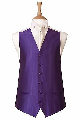 Mens New Small Stripe Cadbury Purple Wedding Tuxedo Dress Prom Cruise Waistcoat