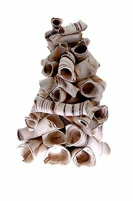 Aquanetta Stack of Tubes for Aquarium Inhabitants 17 x 17 x 20 cm