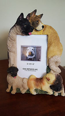 Akita Dog Picture Frame New In Box Puppy
