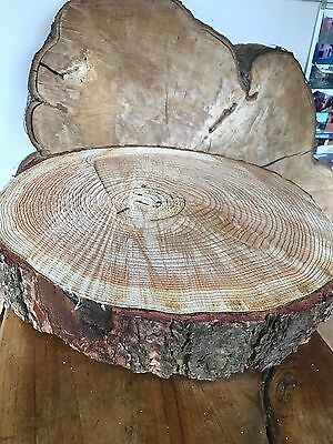 "16"" (40cm) Rustic log slice, DAMAGED 2nd, wooden wedding cake stand, centerpiece"