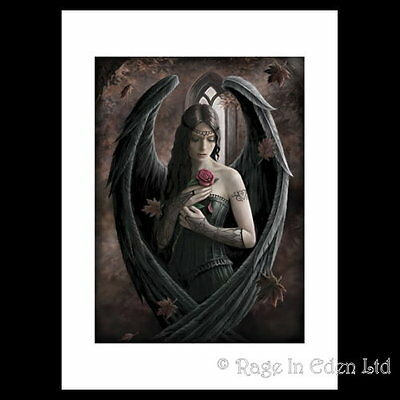 *ANGEL ROSE* Mounted Gothic Fantasy A3 ART PRINT By Anne Stokes