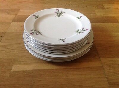 Maddock Royal Vitreous 3  Dinner 24cm 6 Luncheon 21.5cm Plates Thistle Pattern