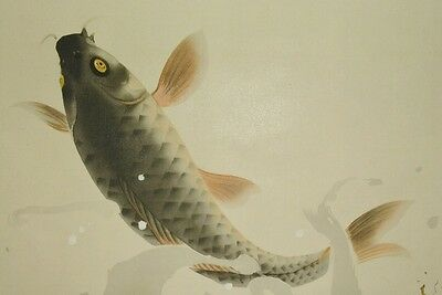 Hanging Scroll Japanese Painting Carp Japan Asian Art Picture Antique 龍子 川端 a853