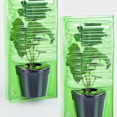Plant Blisters 17cm  Mail Order Pack for 1 Plant (10 pcs)