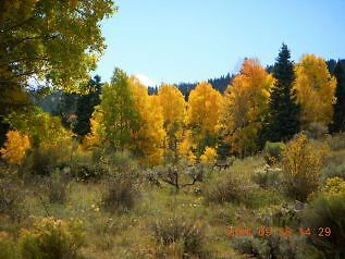 Forbes Park Costilla County, Colorado 2.06 Acres in private gated community