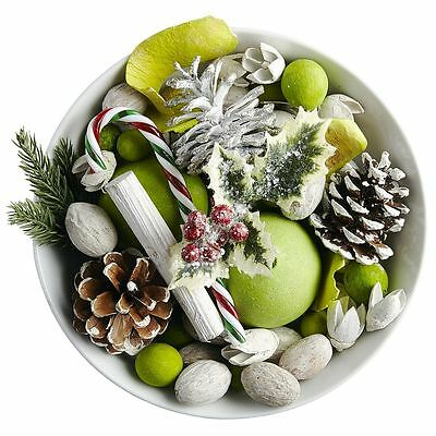 Pier 1 Potpourri Peppermint Creme 12 oz Candy Cane Apple Pine Cone Green New