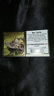 Magnetic Bookmarks Box Turtle