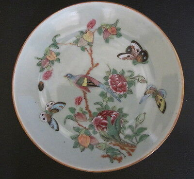 Antique 19th Century Chinese Celadon Plate w/Butterflies Bird Flowers Signed