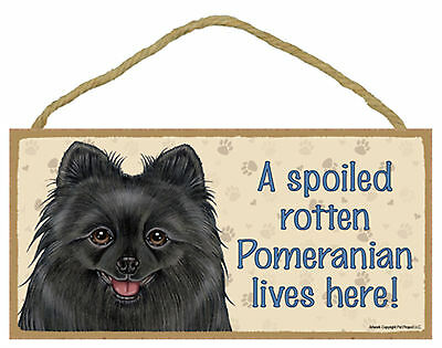 A spoiled rotten Pomeranian lives here! Wood Puppy Dog Sign Plaque Made in USA
