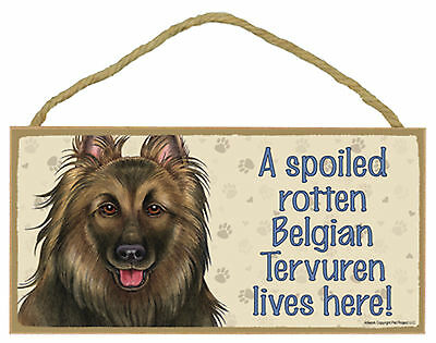 A spoiled rotten Belgian Tervuren lives here! Wood Dog Sign Plaque USA Made