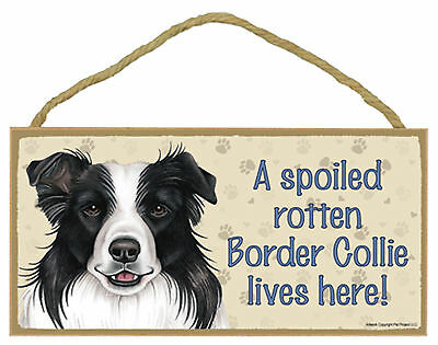A spoiled rotten Border Collie lives here Wood Puppy Dog Sign Plaque Made in USA