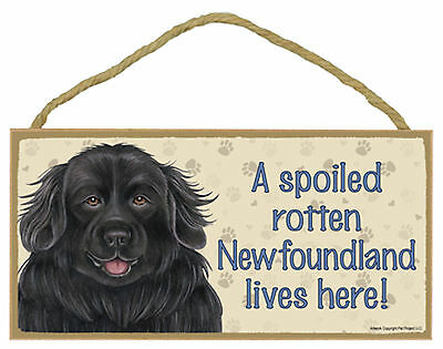 A spoiled rotten Newfoundland lives here! Wood Newfie Puppy Dog Sign Made in USA