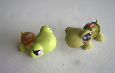 Two Baby Pet Turtles from the Littlest Pet Shop