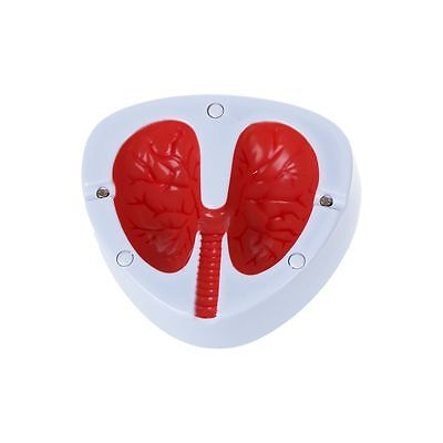 Cough in pulmonary Lung Shape Quit Smok cigarette Ashtray  W6A