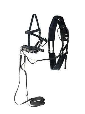 Horze Lunging Training System - Starter Kit - Black - Horse Training Equipment