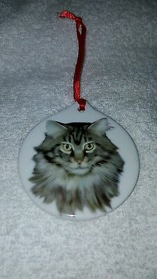 Beautiful Hand Painted Ceramic Kitten Christmas Ornament