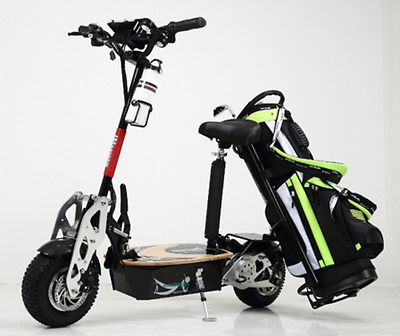 Golf Cart Electric Scooter 48v LITHIUM Powered Buggy