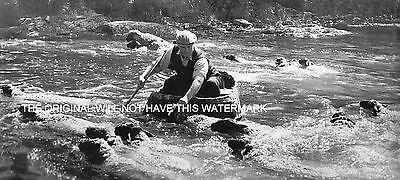 Sheep Washing From Coracle Cenarth Fells Carmarthen 1960  Vintage Mounted Print