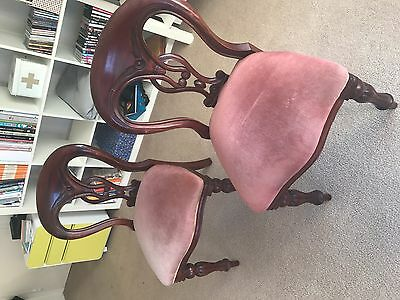 Antique style dining chairs (two) rouge velour