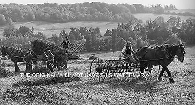 Seed Clover Being Harvested Kent 1946 Vintage Mounted Print Farming History