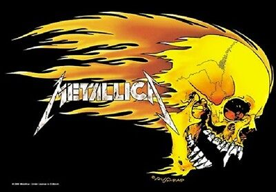 Metallica Skull And Flames  Music Flags Wall Hanger Screen Printed Made In Italy