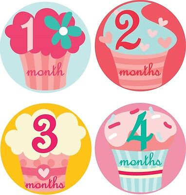 Personalised Monthly Baby Stickers, Milestone Stickers, Baby Shower Gift_G025