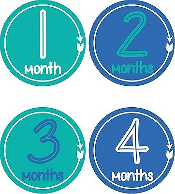 Personalised Monthly Baby Stickers, Milestone Stickers, Baby Shower Gift_B030