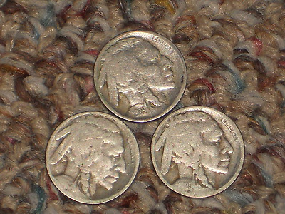 1925, P-D-S Buffalo Nickels, Circulated Lot of 3
