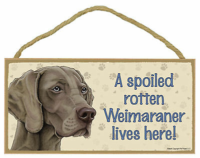 Weimaraner A spoiled rotten Weimaraner lives here! Wood Dog Sign Made in USA NEW