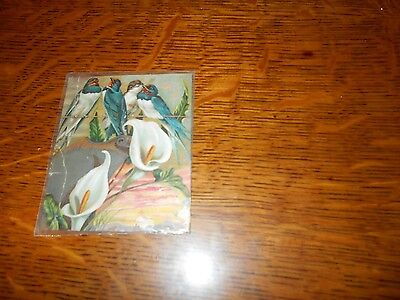 Vintage LION COFFEE trade card or advertising card peace lilies and blue birds